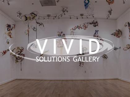 Vivid Solutions Gallery